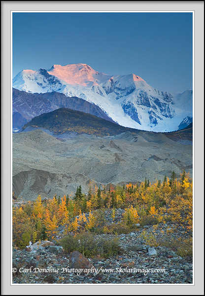 Mt. Blackburn in alpenglow, early fall, Wrangell - St. Elias National Park, Alaska.