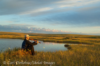 Hiker playing Native American Indian flute on the arctic coastal plain, Arctic National Wildlife Refuge (ANWR), Alaska.