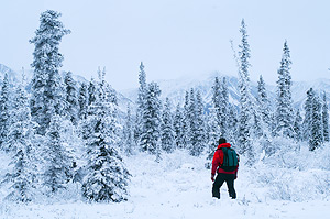 Snowshoeing in Wrangell St. Elias National Park and Preserve, Alaska.