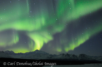 Aurora borealis and Denali, Denali State Park, Alaska.